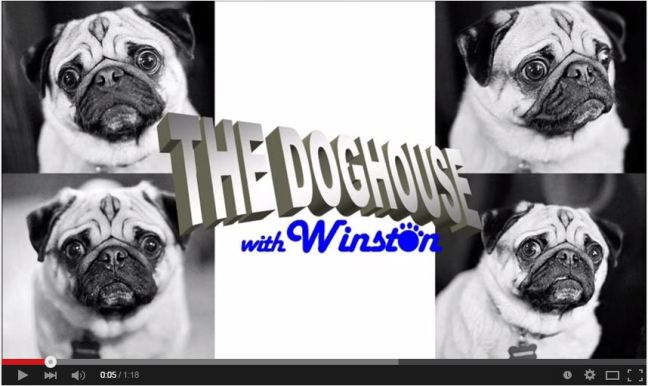 Doghouse with Winston Screenshot